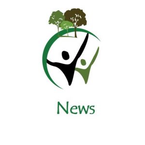 News STDC